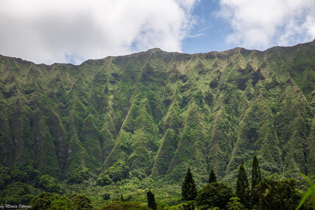 Ko'olau Cliffs-8657