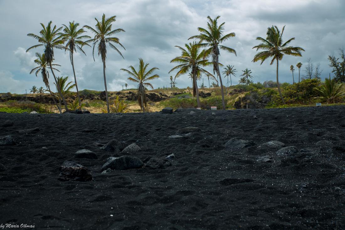 Punalu Black Sand Beach