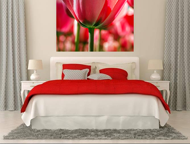 Bedroom in Red